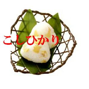令和元年産 お米 30kg 送料無料 奈良 コシヒカリ 玄米 白米 令和元1年産 コメ 奈良県産 こしひかり 玄米 から精米 選択可能