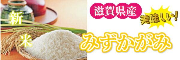 お米10kgコシヒカリ(玄米)(白米)送料無料 29年産奈良県産こしひかり玄米から精米選択可能