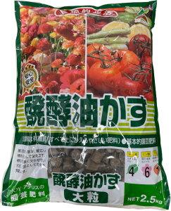 【送料無料】醗酵油かす2.5kg (大粒)菜園・花壇・プランター・鉢物と幅広く安心して使える玉肥。種粕を主原料とした成長に必要な栄養とミネラルを含む万能タイプ!