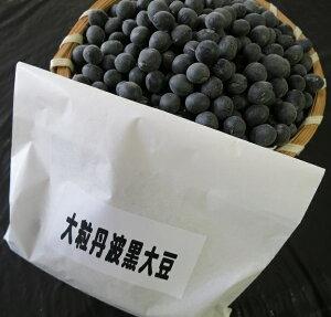 丹波の黒豆種子1dl 約100粒