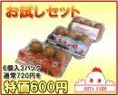 ココットレッド6個+ひまわりキチン卵6個+チャリティーファフィ卵6個+おたまはん(関東・関西)