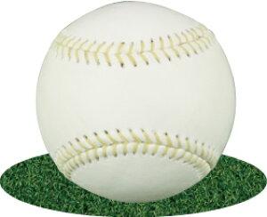 メーカー製造品無印球 硬式練習球アラミド糸 黄糸 縫い糸イエロー 硬式練習ボール ダース販売 野球 高校 大学 社会人用 バッティングマシン用 硬式マシン用ボール