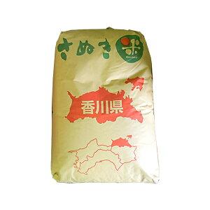 讃岐コシヒカリ まぁいっぺん食べてんまい 30kg(玄米)香川県 令和元年産 【送料無料】一部地域除