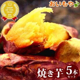 紅はるかの焼き芋5本セット!送料込み国産さつま芋の焼きいもセット スイーツ