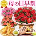 \今なら早割!/ 母の日 プレゼント 花 ギフト カーネーション 生花 鉢植え 送料無料 スイーツ ギフトセット おいも…