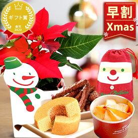 \早割!/ クリスマスプレゼント 2020 ポインセチア 花 プレゼント スイーツ お菓子 ギフト クリスマスケーキ 2.5寸【静岡 AA】