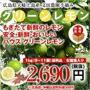 広島県大崎上島産ハウスグリーンレモン 防腐剤不使用 良品1kg(約9玉〜11玉)