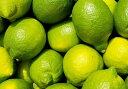 【国産】【送料無料】広島産レモン(露地栽培)防腐剤不使用 良品2.8kg(約25玉〜28玉)国産レモン グリーンレモン…