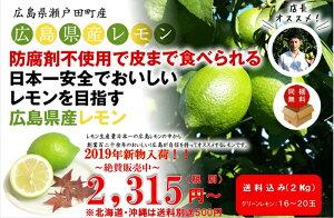【国産レモン】【送料無料】広島産レモン(露地栽培)防腐剤不使用 良品2kg(約16〜20玉)