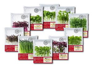マイクロハーブ(アマランサス・バジル・ボリジ・パクチー・クレイジービー・レッドマスタード・ロックチャイブ・紫蘇グリーン・紫蘇パープル・四川花椒菜)お任せ3パック※上記10種の