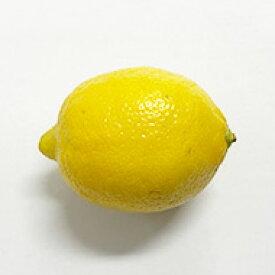 輸入レモン1ケース、15Kg前後、140〜165個前後