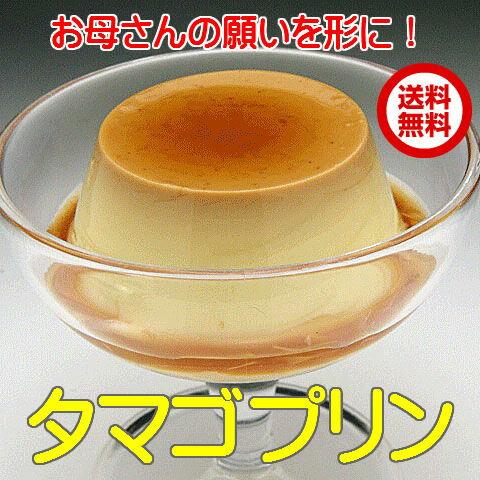 プリン 送料無料 母の日 卵 茨城 タマゴプリン85g×12個 卵が熱で固まる力で作られている本格カスタードプリン 卵プリン ギフト ランキング1位