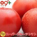 フルーツトマト とまと「スーパーフルーツトマト小箱(8〜12玉 約800g)糖度9度以上」トマト 高糖度 送料無料 茨城県 ギフト プレゼント …