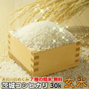 米 こしひかり 玄米 令和2年産 矢口さんちの 天の川のめぐみ 茨城コシヒカリ 30kg精米後27kg 精米無料 冷めてもおいしい 送料無料 お取り寄せ