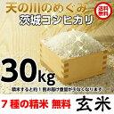 米 こしひかり 玄米 平成30年産 矢口さんちの 天の川のめぐみ 茨城コシヒカリ 30kg精米後27kg 精米無料 冷めてもおいしい 送料無料 お…