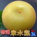 梨 茨城県 なし 幸水 フルーツ 送料無料 特選完熟梨5kg 幸水 3L14玉 1日5箱限定 完熟 ランキング1位 ラジオで紹介 甘い 果物 ギフト お…