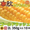 とうもろこし ゴールドラッシュ 送料無料 朝採り 秋 トウモロコシ (ゴールドラッシュ)2L350g以上10本 3.5kg以上 茨城 10月中下旬 朝採…
