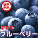 ブルーベリー 「冷凍 ブルーベリー」 1kg (500g×2) 送料無料 茨城県 小美玉 やわらぎファーム 産地直送 茨城 母の日 父の日