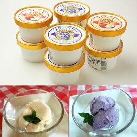 やわらぎファーム アイス 無添加 無着色 「ブルーベリーアイスクリーム、りんごアイスクリーム」 100ml 各5個 計10個 送料無料 ブルーベリー りんご リンゴ
