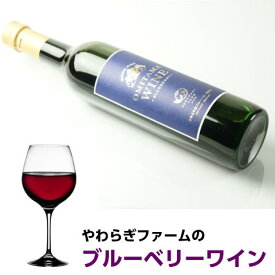 やわらぎファーム ワイン 「ブルーベリーワイン 500ml×2本」 送料無料 やわらぎファームのブルベリーを100%使用 女性向け 甘口 ワイン ブルーベリー 茨城