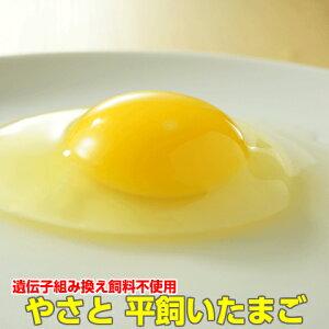 卵 タマゴ 「やさと平飼い卵M90個」 送料無料 安全安心 こだわり新鮮卵 産み立て産地直送 たまご 玉子 平飼い卵 茨城 ギフト お取り寄せ