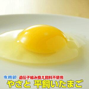 卵 タマゴ 「やさと平飼いたまごM50個 有精卵」 送料無料 安全安心 こだわり新鮮卵 産み立て産地直送 たまご 玉子 平飼い卵 ギフト お取り寄せ