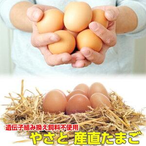 卵 タマゴ やさと平飼い卵 M90個 送料無料 安全安心 産み立て産地直送 たまご 玉子 茨城 送料無料 ギフト お取り寄せ