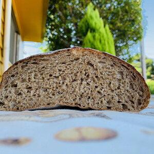 ドイツ産オーガニック全粒粉100%パン