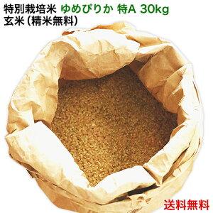 令和元年産|北海道米 特別栽培米 ゆめぴりか 特A(玄米 30kg/精米無料)北海道米/減農薬/30kg