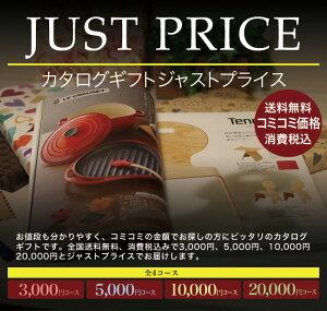 JUSTプライス3000円コース