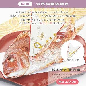 国産天然真鯛姿焼き400g