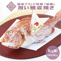 【祝い鯛姿焼き(1kg)】国産最高級ブランド真鯛お食い初め初節句雛祭り贈り物