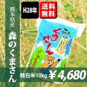 【送料無料】H28年熊本県産森のくまさん 精白米10kg 【おいしいお米】【九州産 米】【九州熊本県から産地直送】
