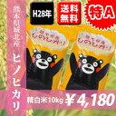 【特A】【送料無料】H28年熊本県城北産ヒノヒカリ 精白米10kg(5kg×2袋) 【くまモン♪】