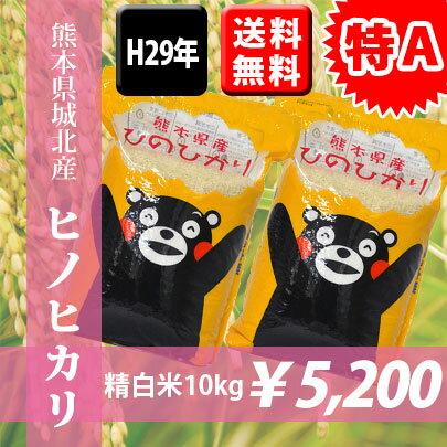 【特A】【送料無料】H29年熊本県城北産ヒノヒカリ 精白米10kg(5kg×2袋) 【くまモン♪】