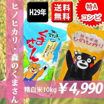 特Aコンビ!【送料無料】熊本県産森のくまさん5kg・ヒノヒカリ5kg 精白米(5kg×2袋)