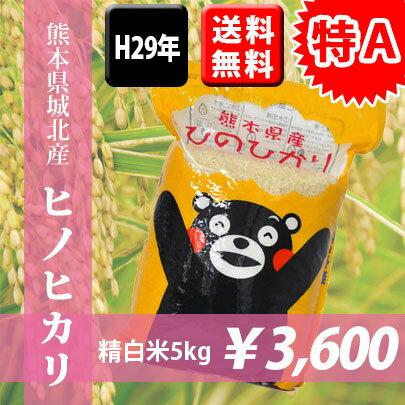 【特A】H29年熊本県城北産ヒノヒカリ【送料無料】 精白米5kg おいしいお米】【九州産 米】【九州熊本県から直送】