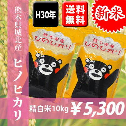 【特A】【送料無料】H30年熊本県城北産ヒノヒカリ 精白米10kg(5kg×2袋) 【くまモン♪】