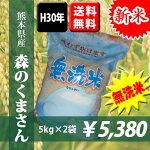 【無洗米】平成30年産米熊本県産森のくまさん無洗米5kg×2袋【送料無料】【おいしいお米】【九州産米】【九州熊本県から直送】