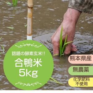 【無農薬】令和1年熊本県産 合鴨米 ヒノヒカリ 玄米5kg【おいしいお米】【九州産 米】自然農法米 【農薬不使用・化学肥料不使用】【送料無料】/お米/熊本県産【米】【米 5kg 送料無