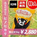 熊本県産ヒノヒカリ5kg