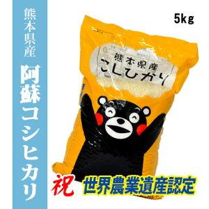 【令和1年産米】 熊本県阿蘇産コシヒカリ 精白米5kg 【送料無料】【おいしいお米】【九州産 米】【九州熊本県から直送】