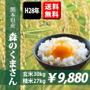 【送料無料】平成28年産 熊本県産森のくまさん 玄米30kg(10kg×3袋)【おいしいお米】【九州産 米】【九州熊本県から直送】