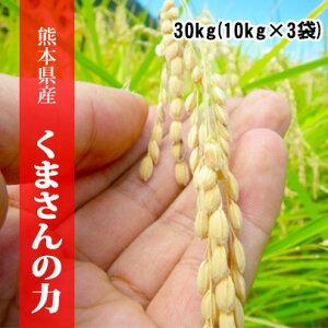 令和2年産米 熊本県産くまさんの力 玄米30kg(10kg×3袋) 【送料無料】【おいしいお米】【九州産 米】【九州熊本県から直送】