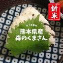 ★選べる精米 20種★熊本県産 森のくまさん 玄米30kg(10kg×3袋)/白米27kg(9kgx3袋)【送料無料】【おいしいお米】【…
