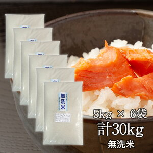 【送料無料】令和3年産新米 業務米 島根県産きぬむすめ 無洗米 5kg×6袋(30kg)米 業務用 安いお米 お米 業務用米 訳あり きぬむすめ