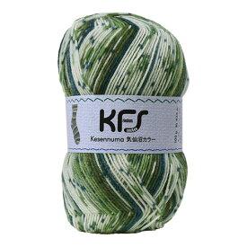 毛糸 Opal-オパール- 気仙沼カラー KFS108.森/グリーン系マルチカラー (M)_b1j