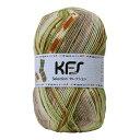 毛糸 Opal-オパール- KFSセレクション KFS129.スパイス/黄緑・ベージュ系マルチカラー (M)_b1j