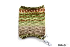 Opal毛糸セレクション(KFS129)スパイス黄緑・ベージュ系マルチカラー[b]5b