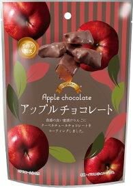 イーグル製菓 ひとりじめスイーツアップルチョコレート 72g×6個